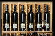 Sale 8515W - Lot 14 - 6x Burton Premium Wines 'The Ultimate Wine Collection' Cabernet Sauvignon, Coonawarra - vintages 1999 to 2004.  Multi award winn...