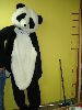 Sale 7490 - Lot 60 - 1 BLACK & WHITE PANDA COSTUME WITH SOFT HEAD