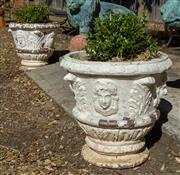 Sale 8745A - Lot 37 - A pair of large antique French terracotta pots with plants, each H 53 x 66cm in diameter