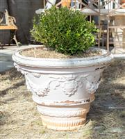 Sale 8745A - Lot 48 - A pair of large antique French terracotta pots with plants, each H 53 x 66cm in diameter