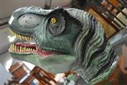Sale 8115 - Lot 1427 - T-Rex Head Museum Replica