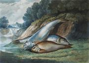 Sale 8624A - Lot 5079 - Samuel A Kilbourne (1836 - 1881) (American) - Dace, Gudgeon and Prussian Carp (Game Fishes Of The United States), 1878 18.5 x 25.5cm