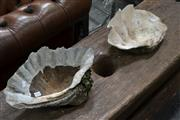 Sale 8013 - Lot 1424 - Pair Of Clam Shells