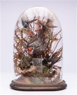 Sale 9185E - Lot 158 - A taxidermy group of bird in glass dome, dome Height 42cm