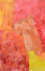 Sale 8226A - Lot 587 - Anna Price Pitjara (c.1965 - ) - Untitled 152 x 90cm (framed & ready to hang)