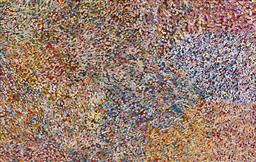 Sale 9148A - Lot 5050 - BESSIE PITJARA (c1960 - ) Bush Plum acrylic on canvas 127 x 200 cm (stretched and ready to hang) signed verso; certificate of authen...