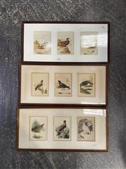 Sale 9058 - Lot 2098 - Artist Unknown (3 works), Bird study (triptych), watercolour (AF foxing), 28 x 48 cm; unsigned.