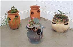 Sale 9174 - Lot 1395 - Collection of plants (various size)