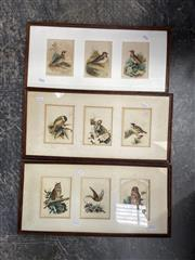Sale 9058 - Lot 2073 - Artist Unknown (3 works), Bird study (triptych), watercolour (AF foxing), 28 x 48 cm; unsigned.