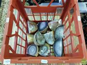 Sale 8550 - Lot 1404 - Crate Natural Polished Agate