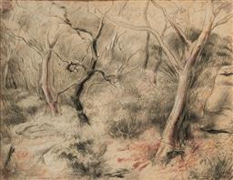 Sale 9109A - Lot 5044 - John Santry (1910 - 1990) Forest Scene pencil (AF - foxing and water damage) 45 x 57.5 cm (frame: 69 x 82 x 2 cm) signed lower right