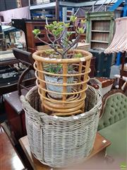 Sale 8566 - Lot 1259 - Cane Plant Stand with Succulent in Planter Together with Wicker Basket