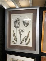Sale 8903 - Lot 2074 - Botanical Decorative Print of Tulips