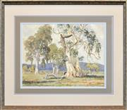 Sale 8266 - Lot 507 - Robert Lovett (1930 - ) - Giant Gums of Flinders Ranges 32 x 42cm