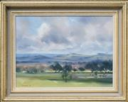 Sale 8522 - Lot 2031 - Hilary Jackman (1943 - ) - Clouds Passing Holbrook, 1989 28 x 38.5cm