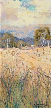 Sale 8475 - Lot 507 - Colleen M Parker (1944 - 2008) - Road to Scone 37 x 18cm