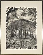 Sale 9053 - Lot 2041 - James Hall - Wooded tumulus 1984 76.5 x 56 cm (frame: 98 x 78 x 2 cm)