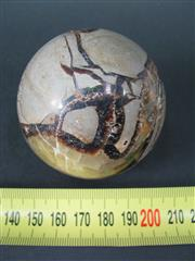 Sale 8250B - Lot 1678 - Septarian Nodule Sphere on Stand