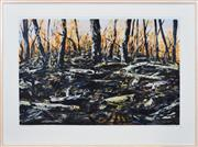 Sale 8389 - Lot 536 - Jan Senbergs (1939 - ) - Burnt Bush, 1996 71 x 106cm