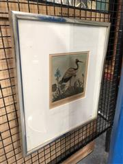 Sale 8789 - Lot 2059 - Eleanor Rappe Crane colour etching, signed lower right