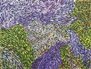 Sale 8723A - Lot 5048 - Jeannie Petyarre (1957 - ) - Bush Medicine Leaves 75 x 100cm (stretched and ready to hang)