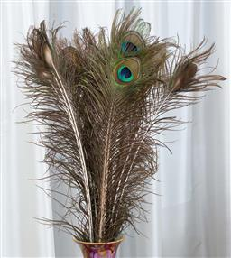 Sale 9155H - Lot 100 - Peacock feathers.