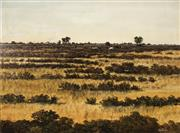 Sale 8722A - Lot 5083 - Michael Taylor (1950 - ) - Cattles Grazing Near Hawker, Flinders Ranges 44 x 59.5cm