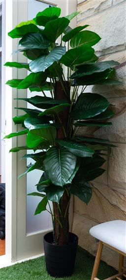 Sale 9150H - Lot 127 - A faux rubber tree plant, Height 170cm