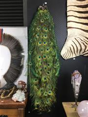Sale 8758 - Lot 56 - Peacock Tail Plume